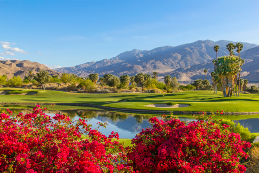 Green - Golf Course「Golf course in Palm Springs, California (P)」:スマホ壁紙(10)