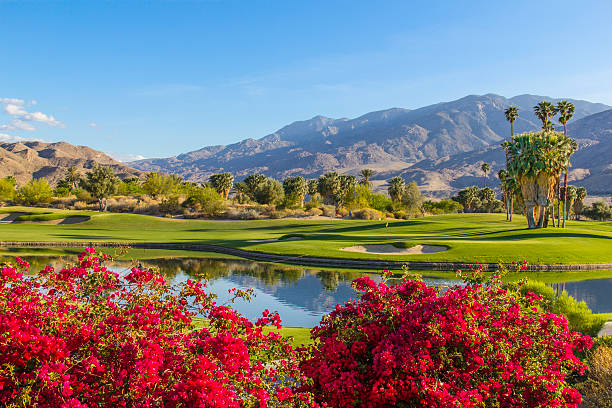 Golf course in Palm Springs, California (P):スマホ壁紙(壁紙.com)