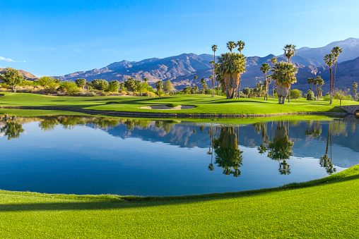Pond「Golf course in Palm Springs, California (P)」:スマホ壁紙(2)