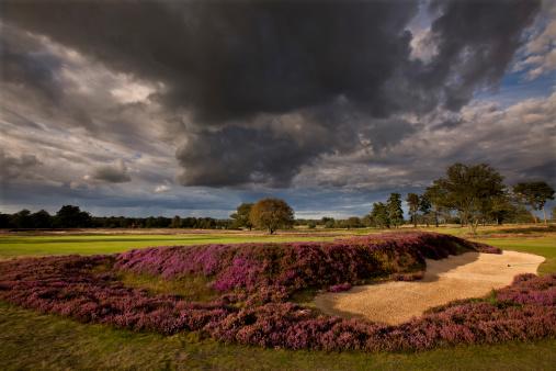 Sand Trap「Golf  course, UK」:スマホ壁紙(16)