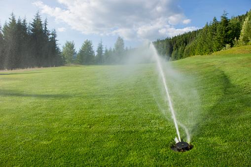 Green - Golf Course「Golf Course Sprinkler」:スマホ壁紙(12)