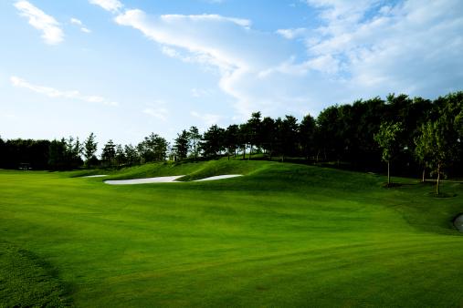 オリンピック「ゴルフコースの背景-XL」:スマホ壁紙(11)