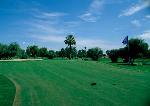 Sand Trap「Golf Course」:スマホ壁紙(7)