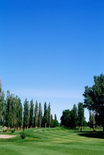 Sand Trap「Golf course」:スマホ壁紙(12)