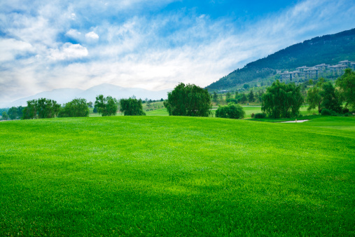 草地「ゴルフゴルフコース」:スマホ壁紙(10)