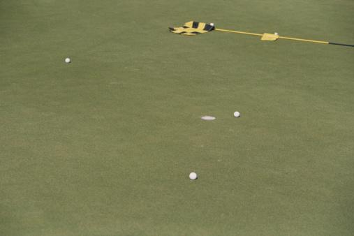 Putting - Golf「Golf course」:スマホ壁紙(19)