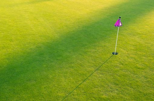 Sports Flag「A golf course putting green」:スマホ壁紙(6)