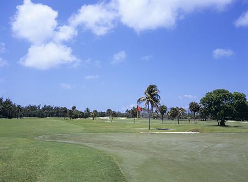 Sand Trap「Golf course, Florida, USA」:スマホ壁紙(2)