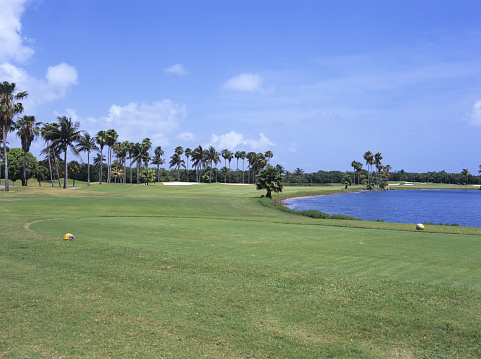 Sand Trap「Golf course, Florida, USA」:スマホ壁紙(3)