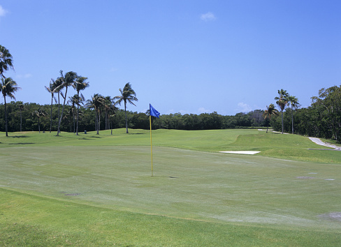 Sand Trap「Golf course, Florida, USA」:スマホ壁紙(5)