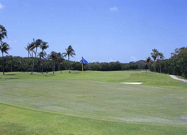 Golf course, Florida, USA:スマホ壁紙(壁紙.com)