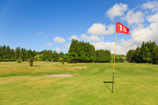 Taking a Shot - Sport「Golf Course in Summer」:スマホ壁紙(1)