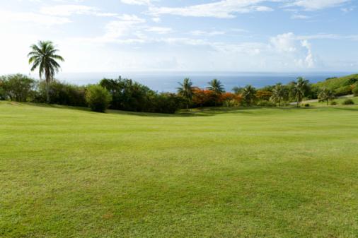 Northern Mariana Islands「Golf course beside the sea, Saipan, USA 」:スマホ壁紙(0)