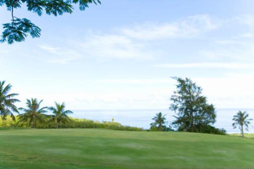 Northern Mariana Islands「Golf course beside the sea, Saipan, USA 」:スマホ壁紙(13)