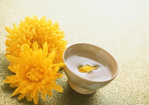 キク科「Liquor of Chrysanthemum Blossoms」:スマホ壁紙(12)