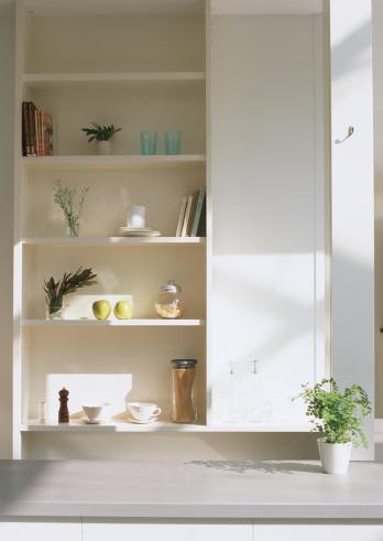 Apple Blossom「Shelf and potted Maidehair ferns」:スマホ壁紙(18)