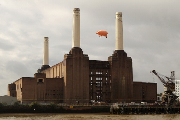動物「Flying Pig Recreates Pink Floyd Album Cover」:写真・画像(17)[壁紙.com]