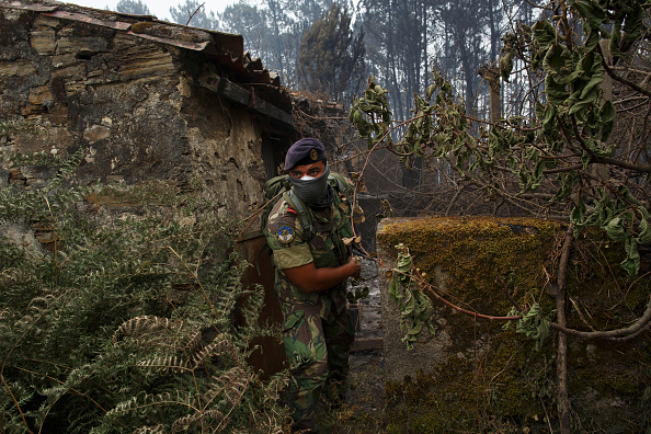 ポルトガル陸軍の写真・画像 検...