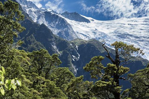 Mt Aspiring「ロブ Roy の氷河、ワナカ,New Zealand」:スマホ壁紙(1)