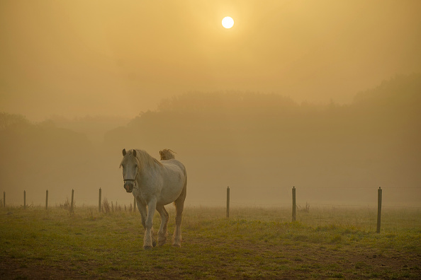 Weather「Day Breaks On The First Day Of Autumn」:写真・画像(11)[壁紙.com]