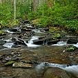Nantahala National Forest壁紙の画像(壁紙.com)