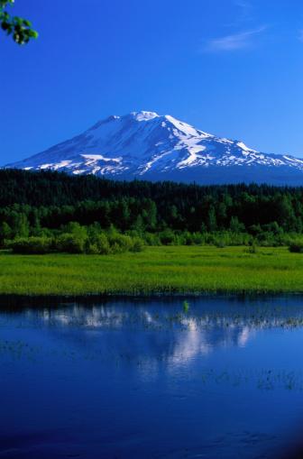アダムス山「Mount Adams at Trout Lake」:スマホ壁紙(7)