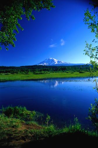 アダムス山「Mount Adams at Trout Lake」:スマホ壁紙(8)