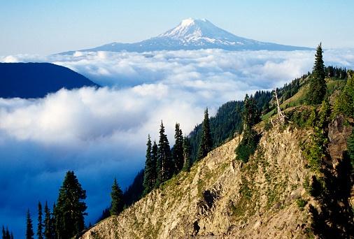 アダムス山「Mount Adams above Clouds」:スマホ壁紙(6)