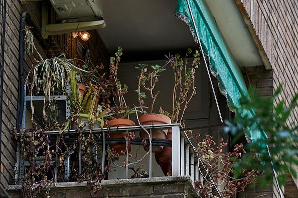 Madrid「Dead Flowers Seen On Balcony Of Coronavirus Victims」:写真・画像(2)[壁紙.com]