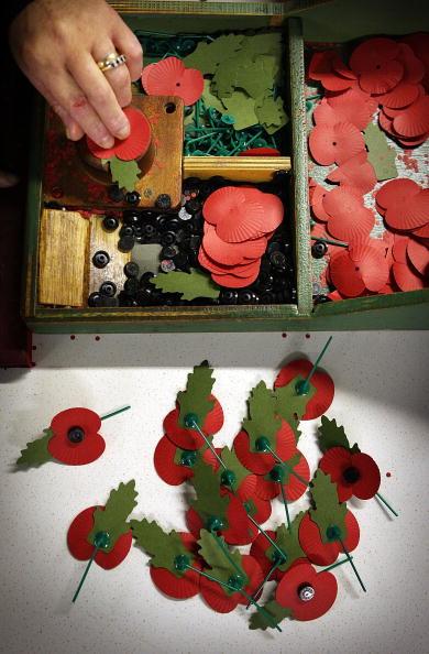 Richmond-upon-Thames「Volunteers Help Make Thousands Of Poppies」:写真・画像(16)[壁紙.com]