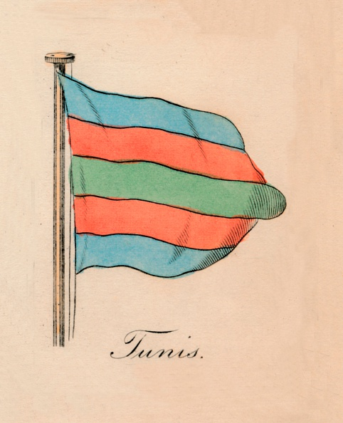 Environmental Conservation「Tunis, 1838」:写真・画像(3)[壁紙.com]