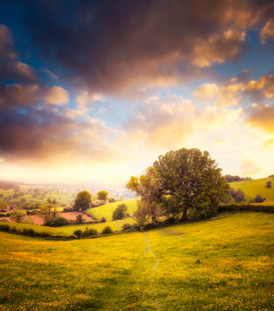 Beautiful Sunset Over A Landscape View In The Cotswolds, England:スマホ壁紙(壁紙.com)
