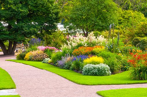 Flowerbed「Beautiful summer garden」:スマホ壁紙(4)