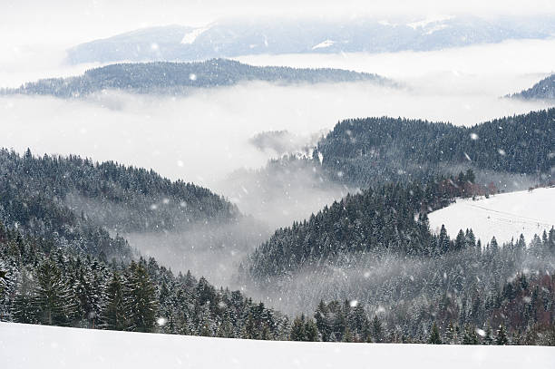 Beautiful Snowy Winter Morning:スマホ壁紙(壁紙.com)