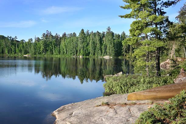 Beautiful Summer Morning on a Wilderness Lake:スマホ壁紙(壁紙.com)
