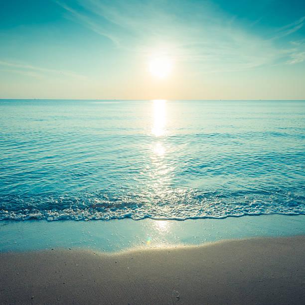 美しいシルエットにトロピカルな海の夕日:スマホ壁紙(壁紙.com)