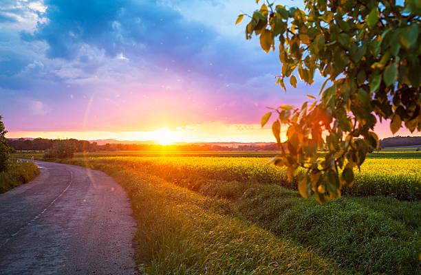 Beautiful sunset:スマホ壁紙(壁紙.com)
