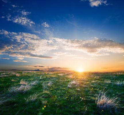 Dawn「Beautiful summer sunrise」:スマホ壁紙(11)