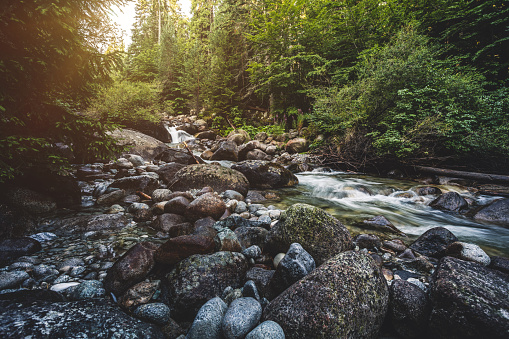 Wilderness Area「Beautiful stream in mountains」:スマホ壁紙(1)
