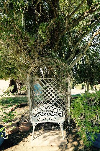 Decoration「White cast iron garden bench under tree」:スマホ壁紙(14)