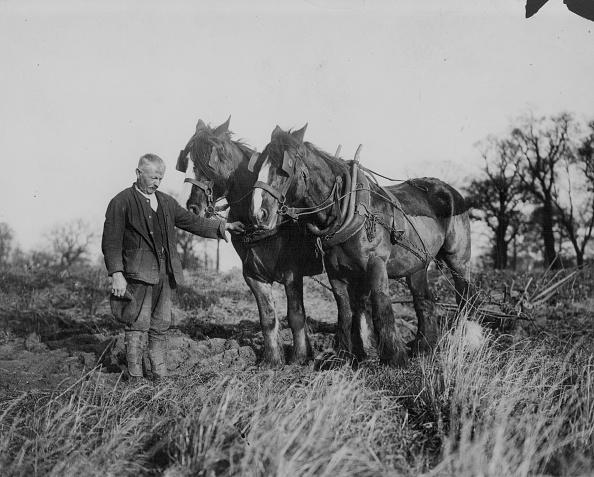 Keystone「World War One」:写真・画像(12)[壁紙.com]