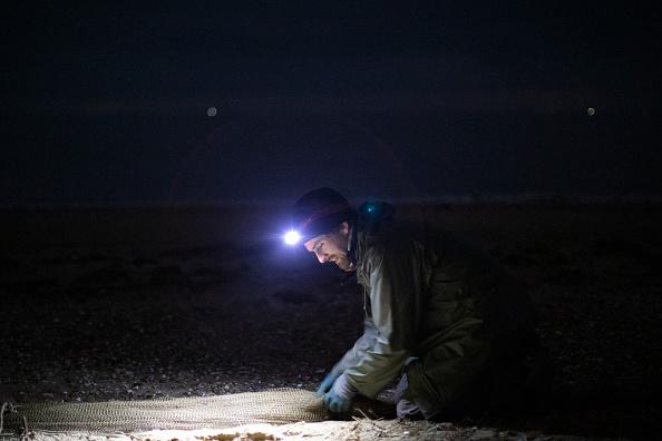 Cannon Beach「Conservationists Track Shorebird Populations On East Anglia Coast」:写真・画像(10)[壁紙.com]