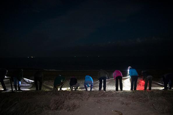 Cannon Beach「Conservationists Track Shorebird Populations On East Anglia Coast」:写真・画像(9)[壁紙.com]