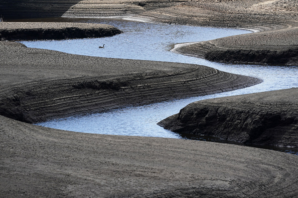 Environment「UK Experiences Very Dry Spring After A Very Wet Winter」:写真・画像(18)[壁紙.com]
