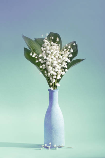 Lilies Of The Valley (Convallaria Majalis) - bouquet of flowers in a vase on an aquamarine background:スマホ壁紙(壁紙.com)