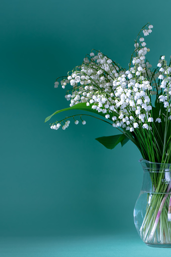 Birthday Card「Lilies Of The Valley (Convallaria Majalis) - bouquet of flowers in a vase on a teal background」:スマホ壁紙(10)