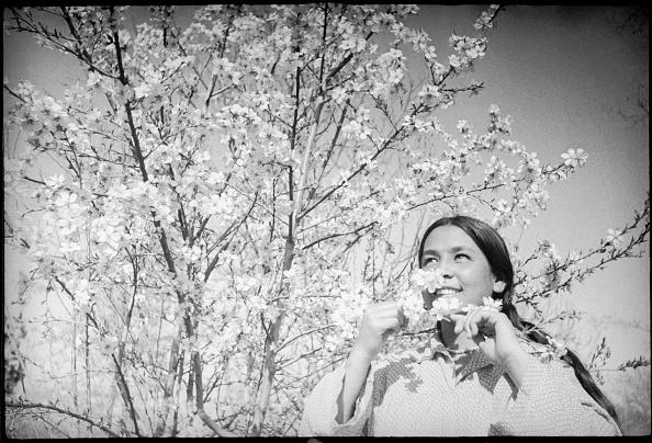 Max Penson「In Spring Garden」:写真・画像(7)[壁紙.com]