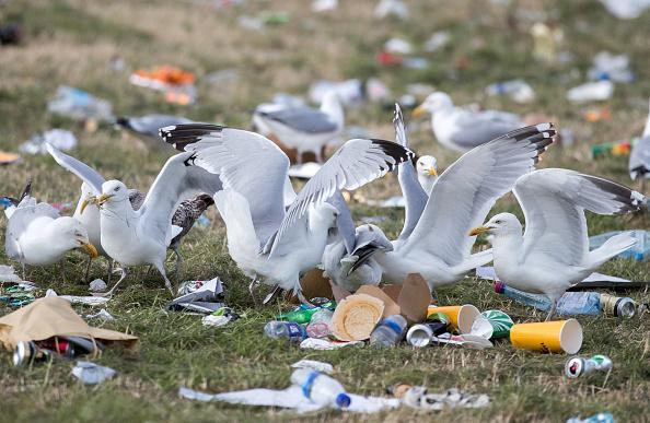 ベストオブ「Glastonbury Festival Goers Depart And The Clear Up Begins」:写真・画像(10)[壁紙.com]
