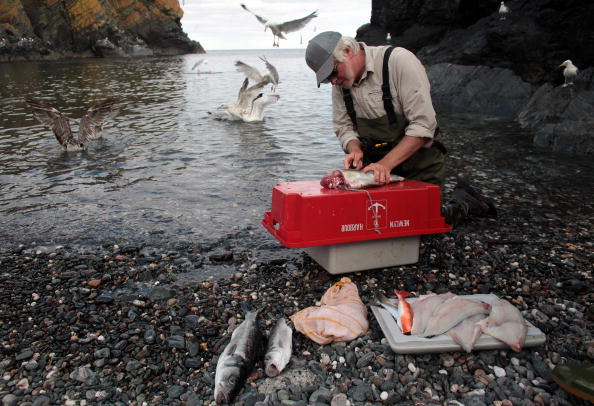 Fisherman「Traditional Cornish Fishing Village Hosts Angling Competition」:写真・画像(18)[壁紙.com]