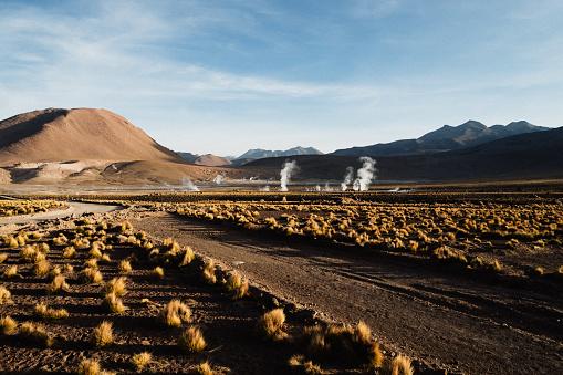 Tatio Geysers「El Tatio geyser field in northern Chile」:スマホ壁紙(3)